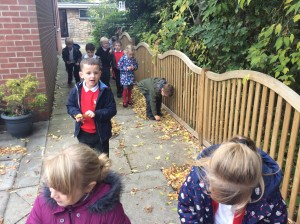 We went for a walk around school to search for signs of autumn.