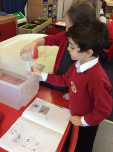 The children also used a cup to find out which of the different sized containers held the most and least water.